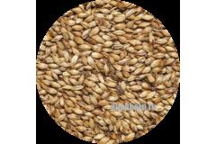 Солод карамельный ячменный Caramel EBC 150 (Viking Malt) 1 кг
